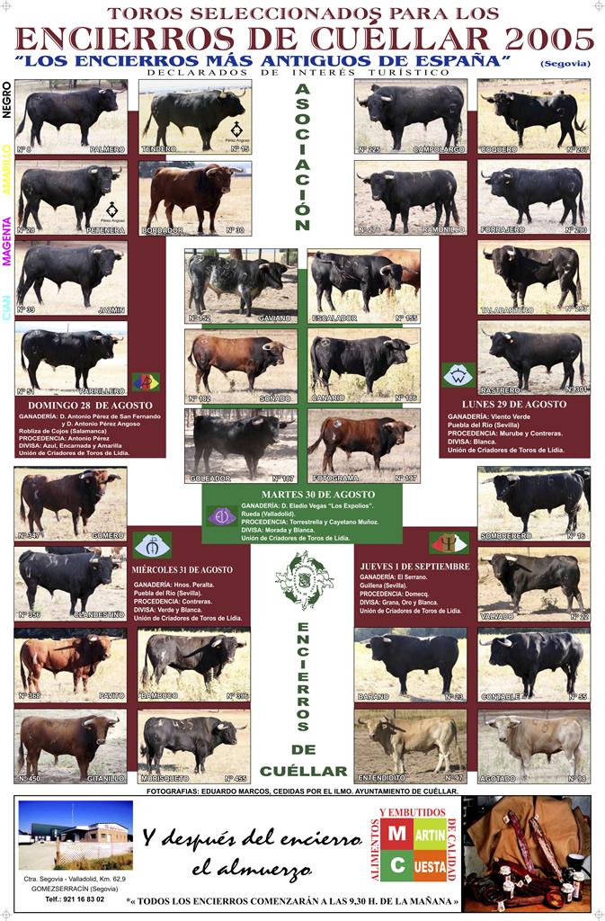 Cartel toros Encierros de Cuéllar del 2005