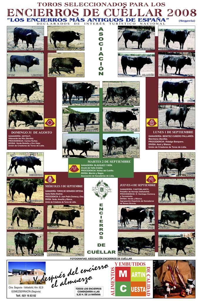 Cartel toros de los Encierros de Cuéllar del 2008