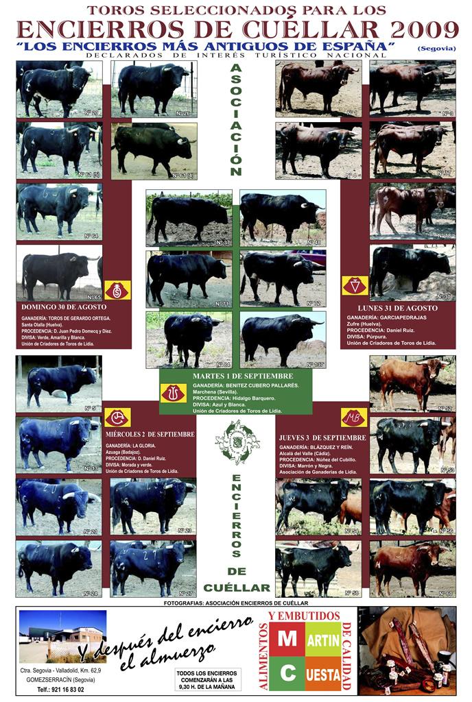 Cartel toros de los Encierros de Cuéllar del 2009